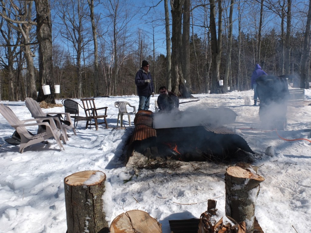 Maple sugaring time - the evaporator heats up